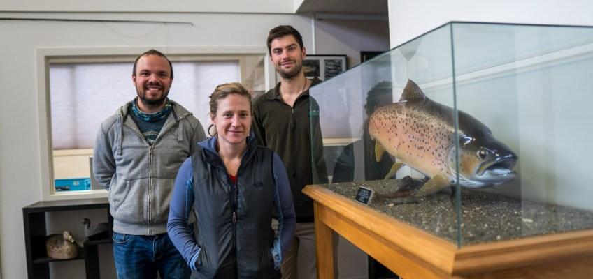 Fish&Game South Land Volunteering