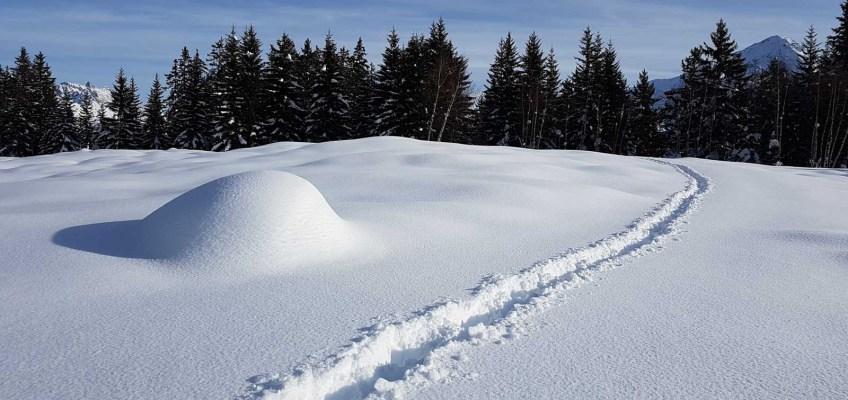 Deep powder snow