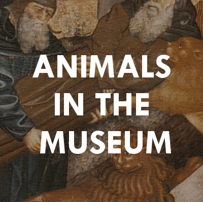 Animals in the Museum