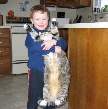 Mr. Tabbers, the best cat!