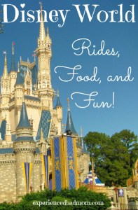 Disney World Rides, Food and Fun