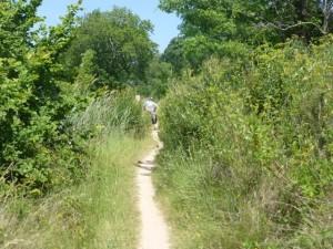 Even narrower still with 4-5' tall grass near Ouveillan