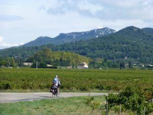 Through the Gigondas vineyards enroute to Vaison la Romaine