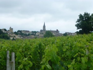 View of Saint Emilion from the vineyards