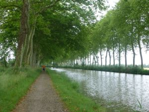 Peaceful scene along the Canal du Midi