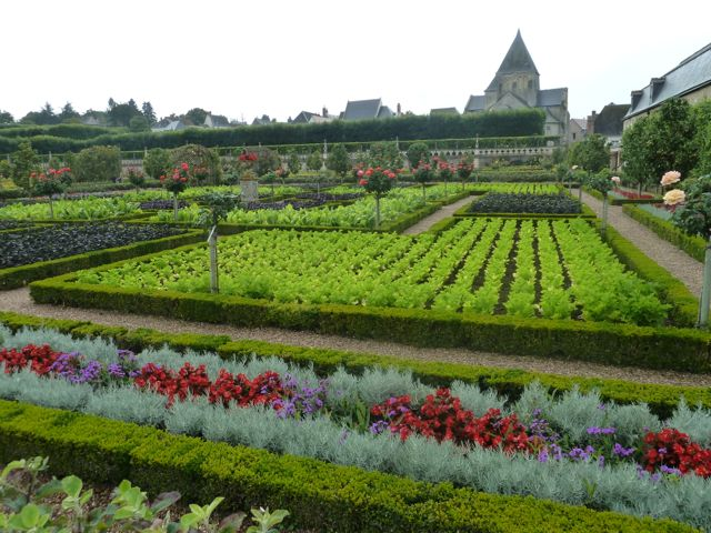 The gorgeous gardens at Villandry