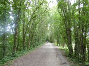 Typical pathway on the Petit Tour de Manche