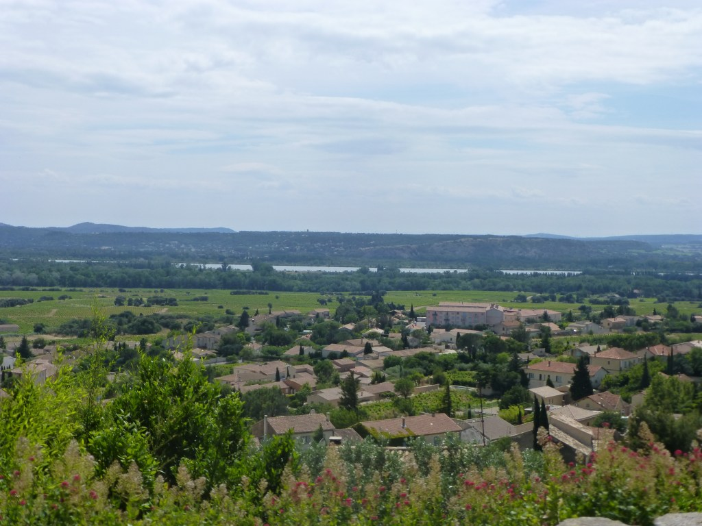 View of the Rhone from the Chateauneuf-du-Pape vineyards