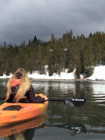 Full Day Single Sit-in Kayak Rental