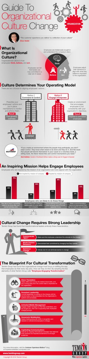 Guide to Organizational Culture Change (Infographic