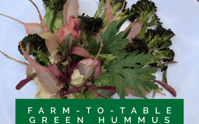 Experience Nutrition: Farm-to-Table with The Farm at South Mountain: Green Hummus