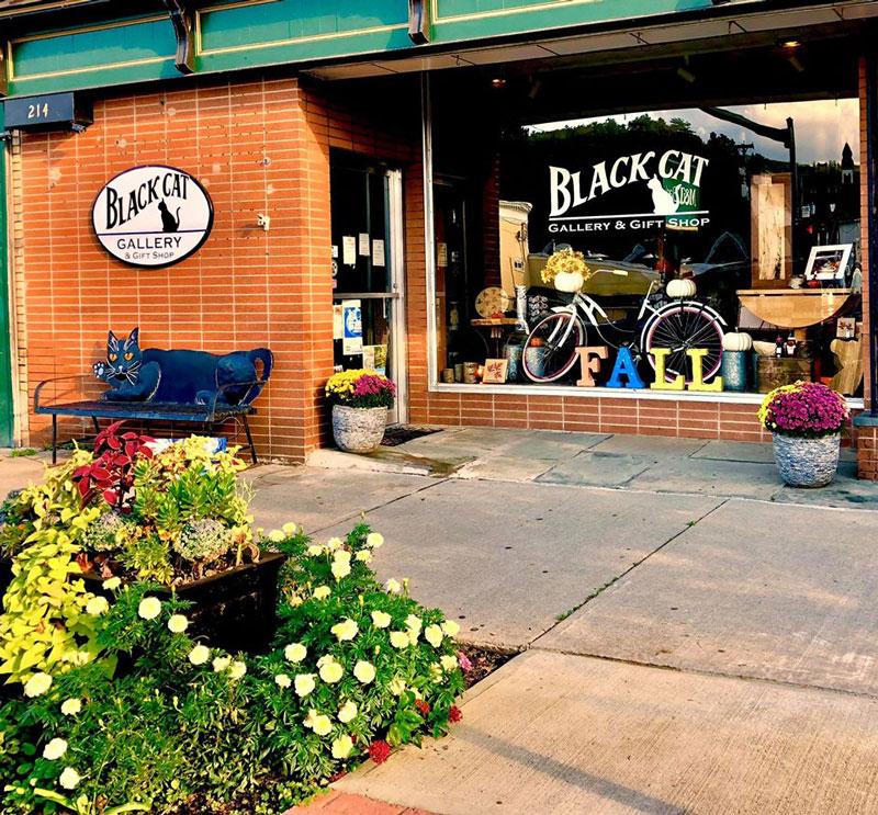 Black-Cat-Gallery-Owego-Shop-Street-View