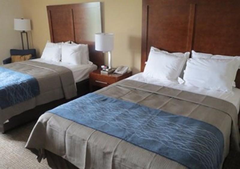The Comfort Inn