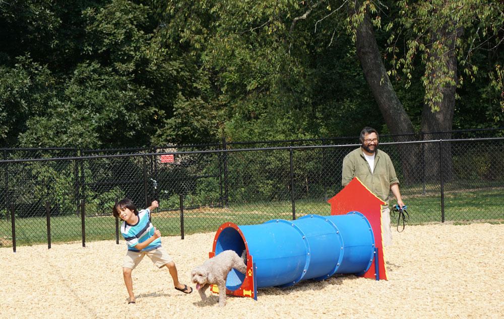 Dog-Park-Owego-Tioga-County-Agility-Fun