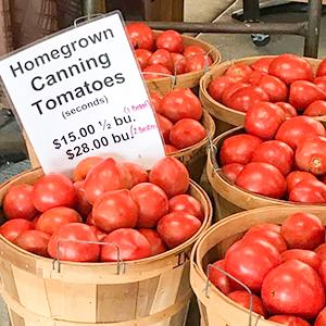 Iron-Kettle-Farm-Candor-Canning-Tomatos-Tioga-County