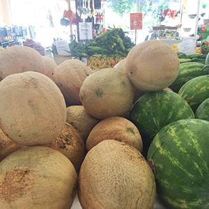 Iron-Kettle-Farm-Candor-Melons-Tioga-County