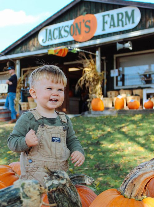 Jackson's Pumpkin Farm
