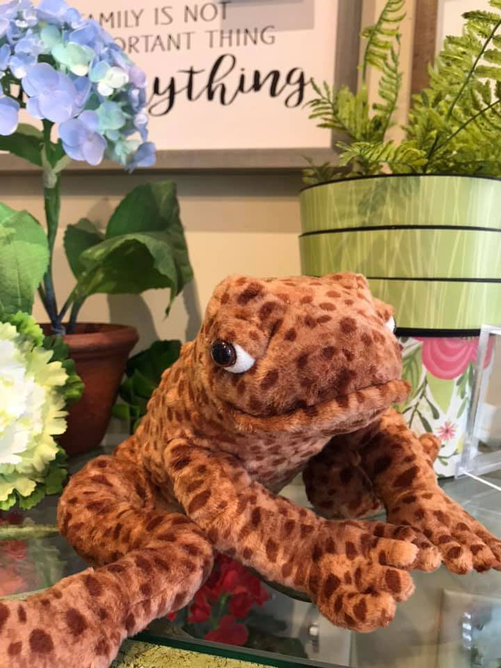 Katie's-Kreations-Plush-Frog