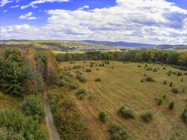 Logan hill 5