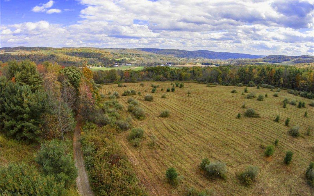 Logan Hill Nature Preserve