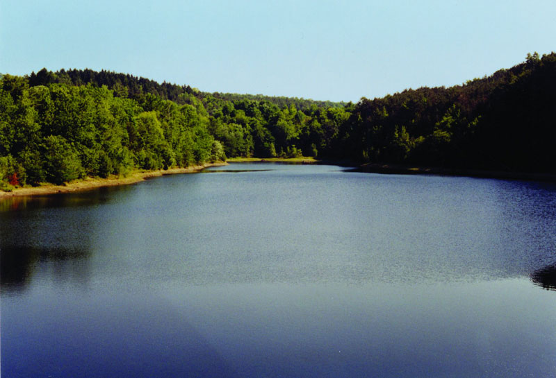 Two-Rivers-State-Park-Waverly-NY-Resevoir-1
