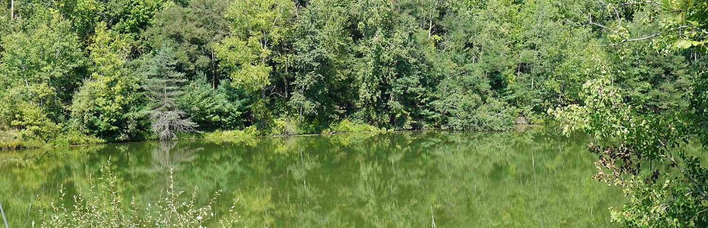 home-slider-river