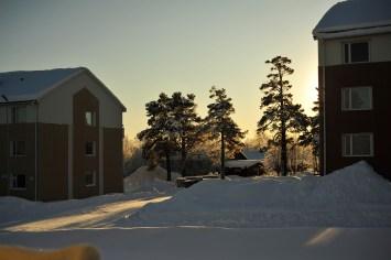 vinterhemma