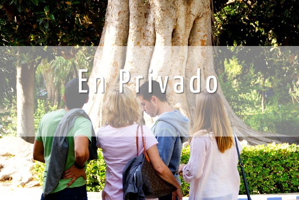 Visita guiada personalizada en privado