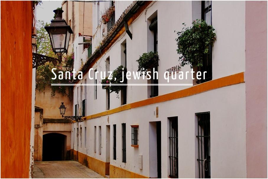 Santa Cruz quarter free tour