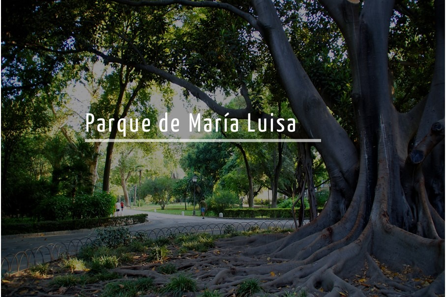 Gymkana botánica por el Parque de María Luisa