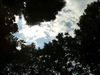 Entspannung pur - hoffentlich erst der Anfang eines langen, sonnigen Sommers
