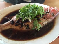 Steamed snapper with black bean sauce