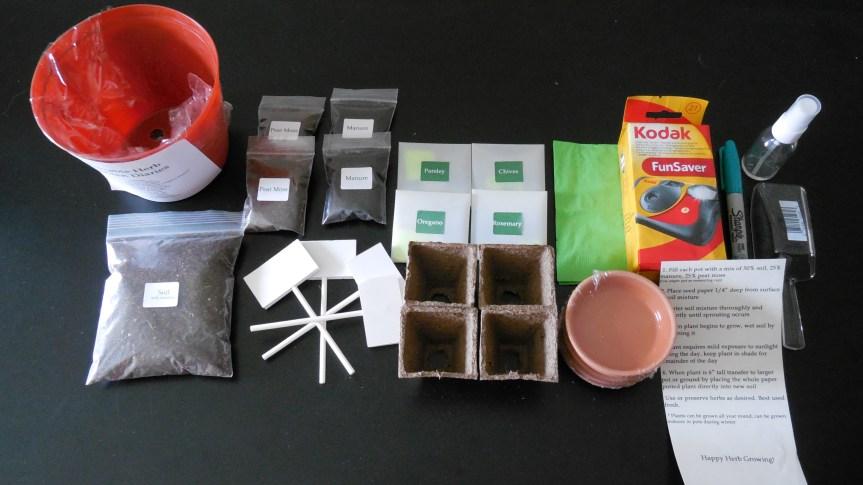Portable Herb Garden Diaries – Katie Cheung