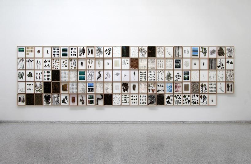 dutch-pavilion-venice-biennale-herman-de-vries-designboom-62