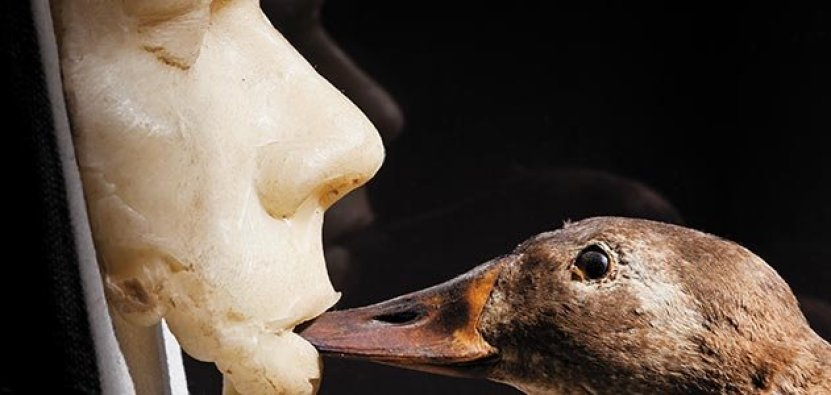 odd-museums-jurassic-technology-631-jpg__800x600_q85_crop