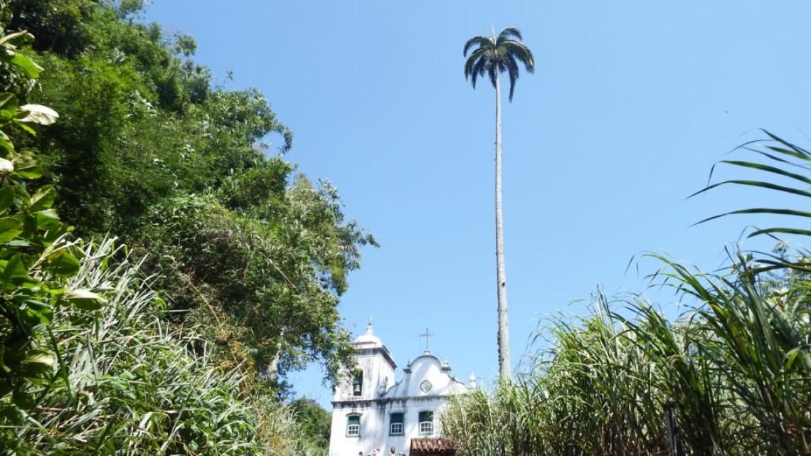 freguesia de santana 2