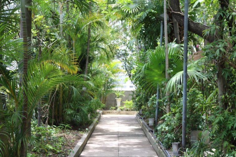 Jardim no terraço do Edifício Matarazzo - Foto: ExperimenteSP