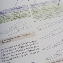 Foto aus dem Handbuch Wintergärtnerei (Ausschnitt 2)