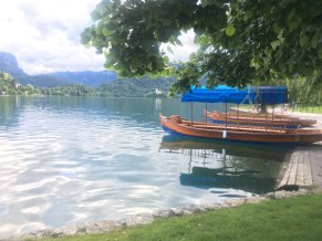 Bled rowing boat