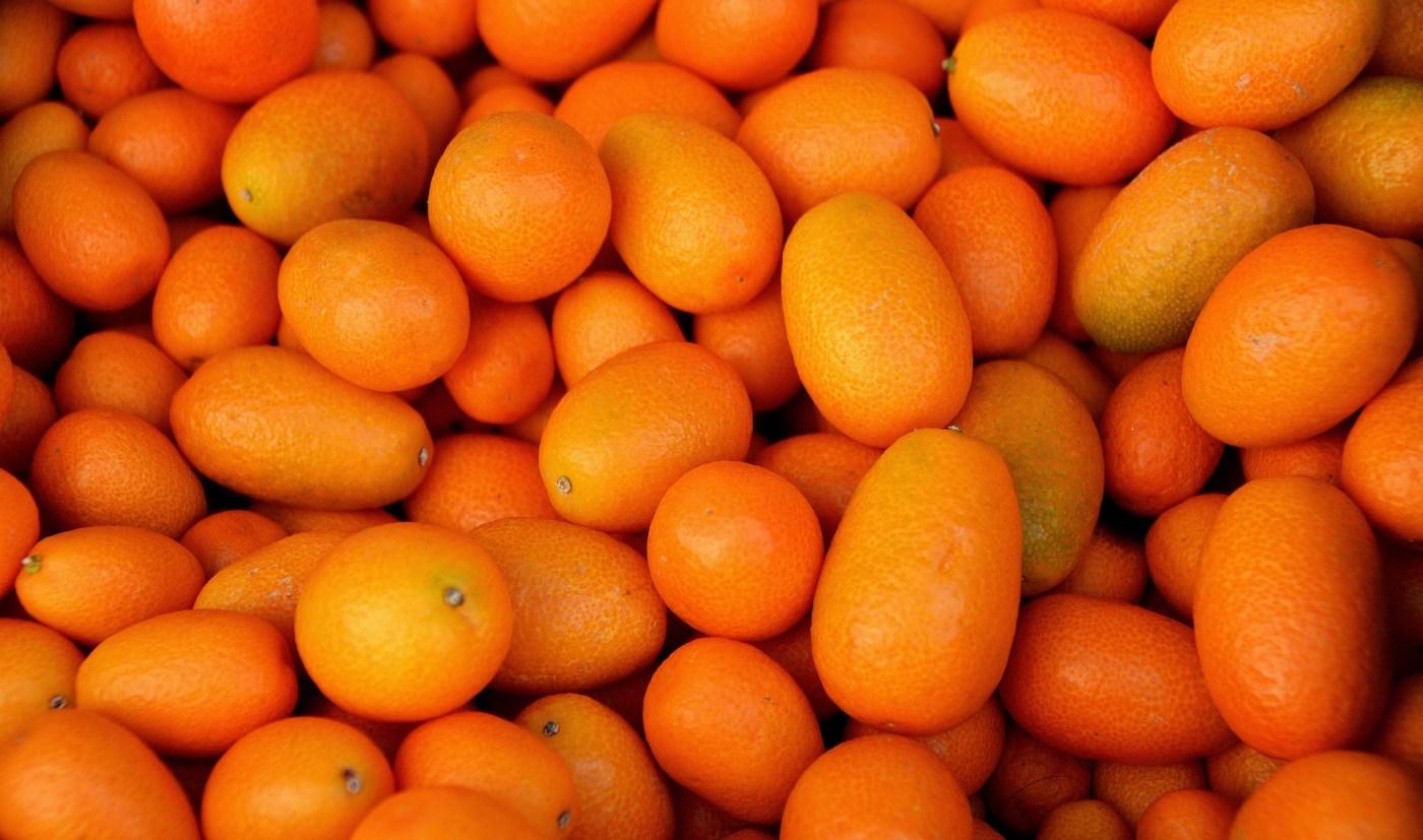 Don't touch the kumquat vodka