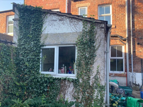 gable end with ivy