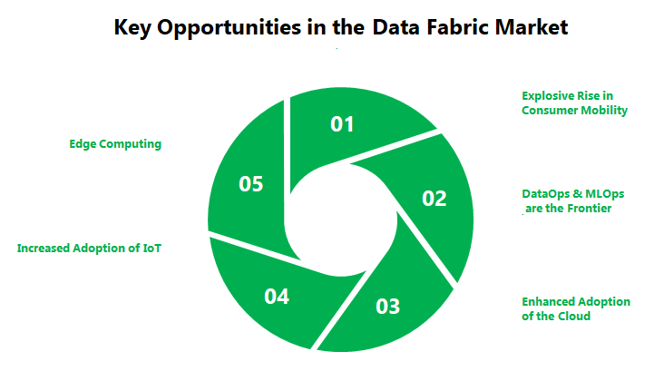 Key opportunities in the Data Fabric Market