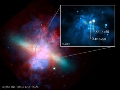 Композитное изображение галактики М82. Данные в рентгеновском диапазоне показаны синим; в оптическом – зеленым и оранжевым; в инфракрасном – красным. Более крупно показан рентгеновский снимок, на котором можно увидеть пару особенно ярких источников излучения (показаны стрелками). Это – 2 средние черные дыры; центр галактики со сверхмассивной черной дырой помечен крестом