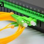 Vega трансформирует телеком-бизнес