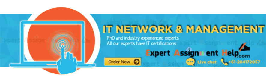 IT network assignment help 647 × 189