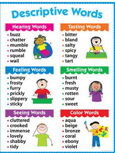Descriptive Words 228 × 303