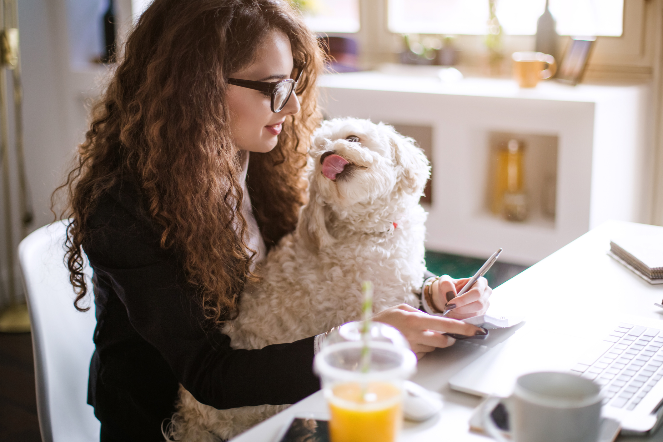 working and holding her dog in her lap.
