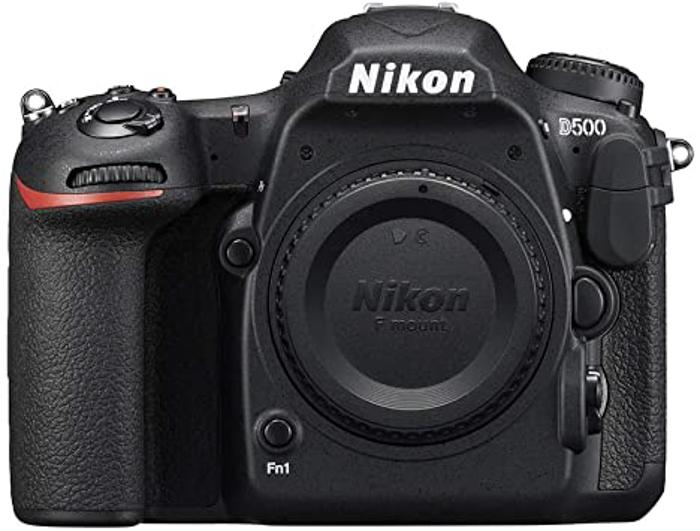 Best Nikon camera for portraits D500