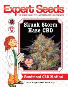 Skunk Storm Haze CBD Feminized