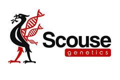 Scousegenetics Seeds
